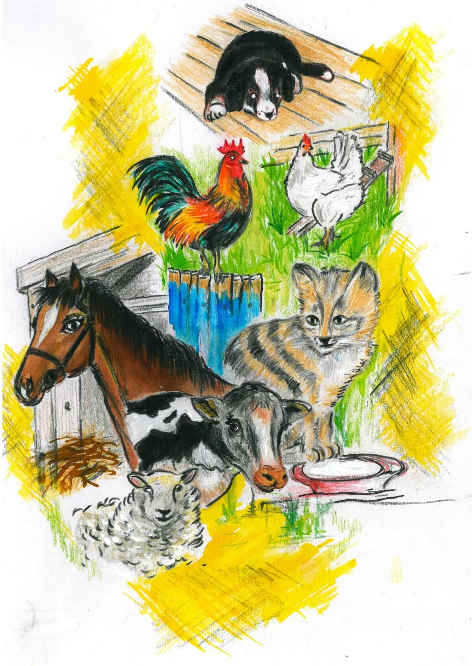 farma zvierata